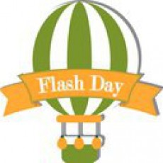 Flash Day | Львів