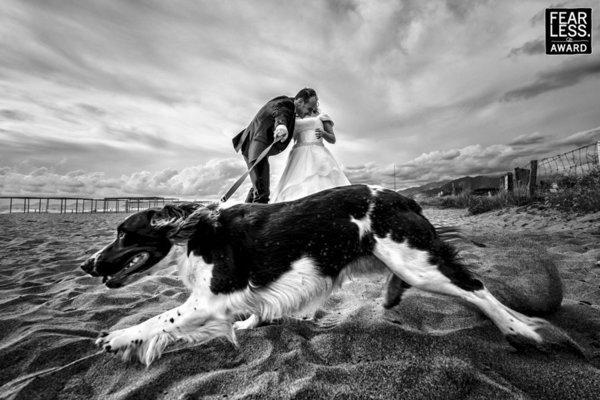 Photographer ALESSANDRO COLLE